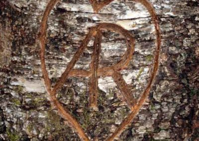 Letter carvig initials in birch log wedding flowers