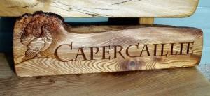 caper2