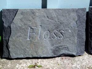 floss1
